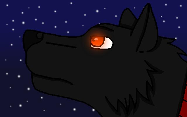 StarLiveta24's Profile Picture