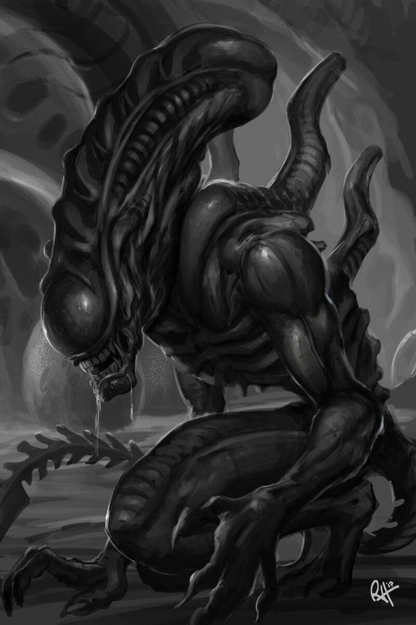 xenomorph  by jersonayala27