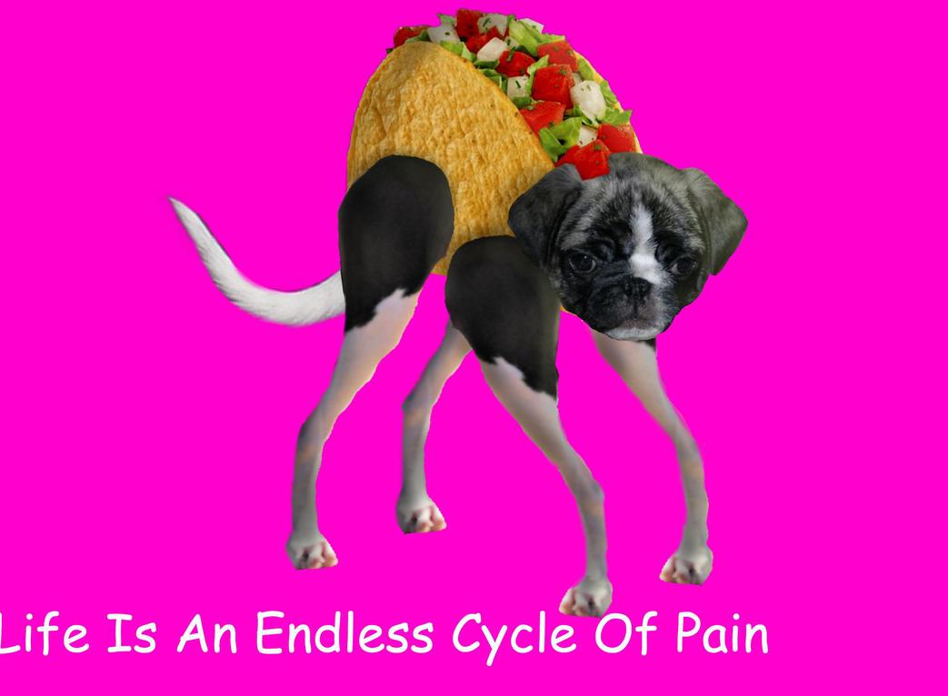 Taco Doge 2.0 by LionHeartDraws