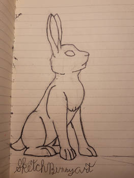 A Bunny that has been sketched
