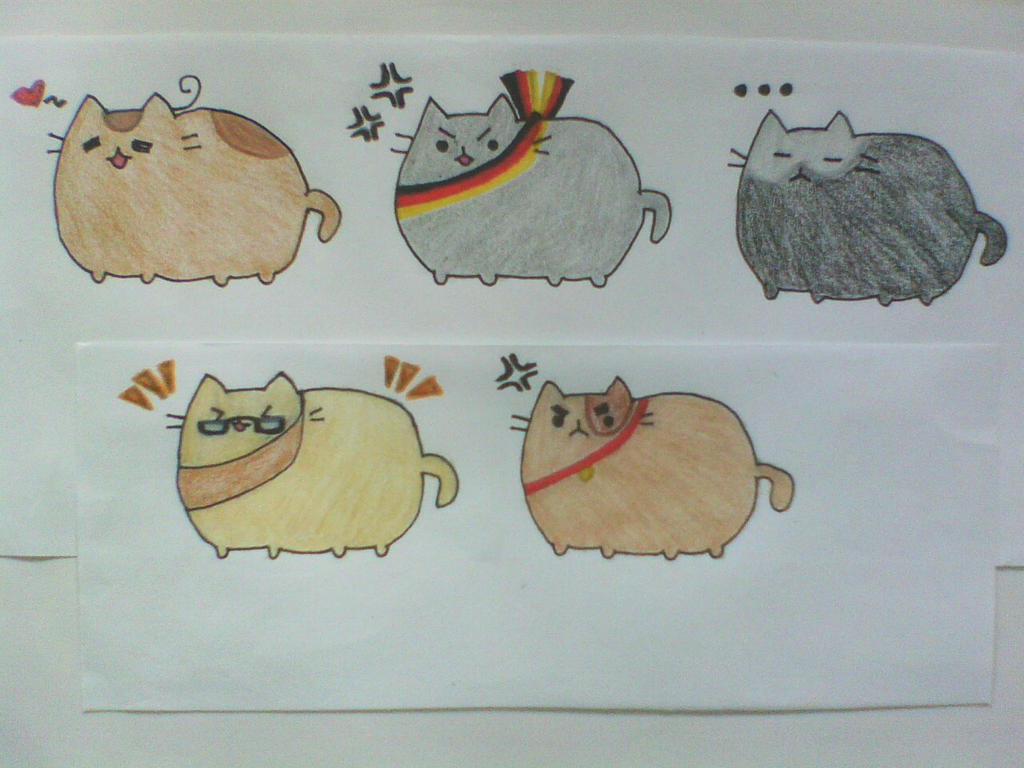 List of Synonyms and Antonyms of the Word: hetalia america cat