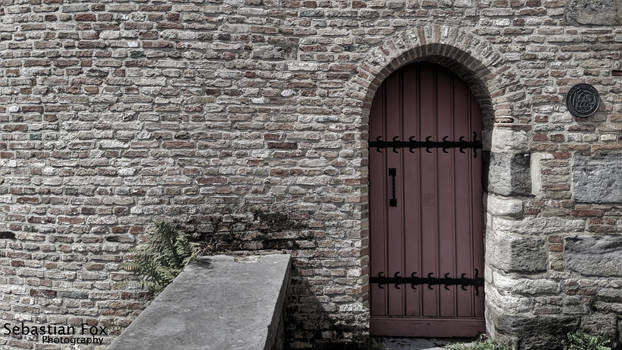 Ancient Door by Perry-T-Platypus
