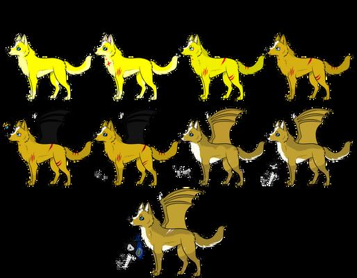 Evolution of Hunter! 2008-2019