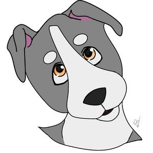 Pibbull Pupperdoggo