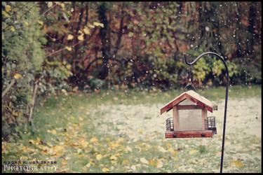 October. by MRvLPhotography