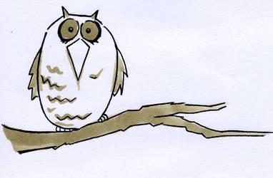 Day 7 (Owl)