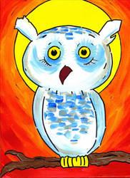 White Owl by Phenzyart