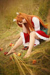Spice and Wolf: Horo