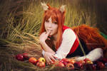 Spice and wolf: Holo