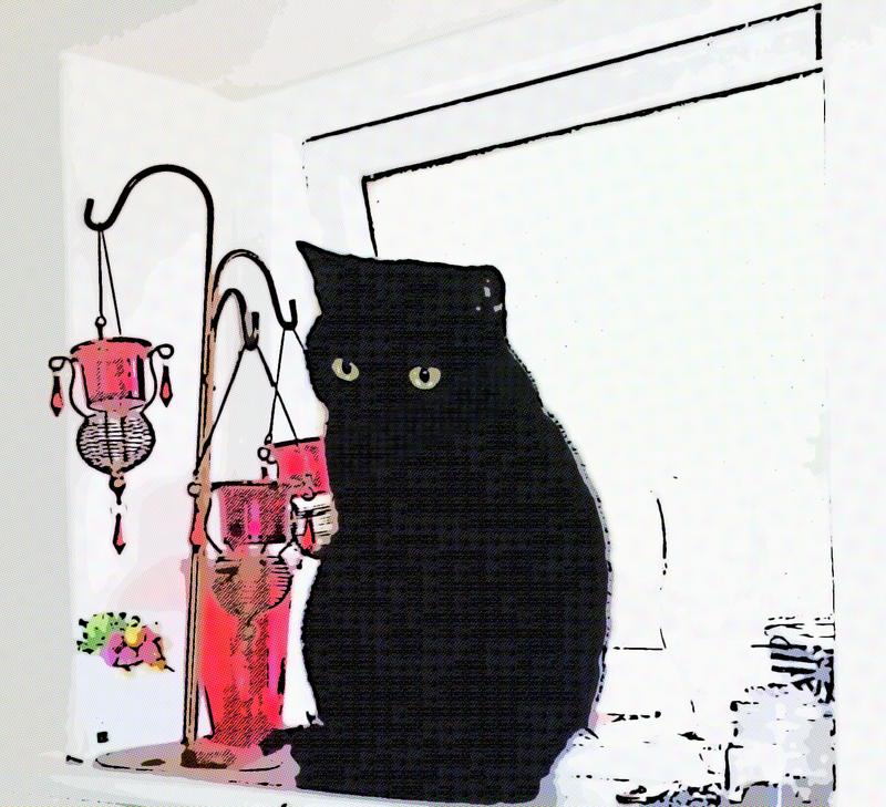 Black Cat Logo 7 by Solace-Grace