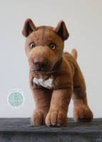 American Pit Bull Terrier plush commission by Tedimo