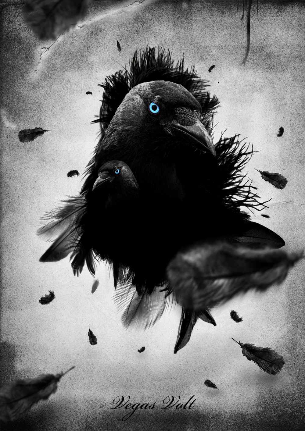 Crow Illusion by vegasvolt3ya9a on DeviantArt