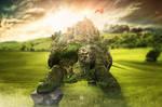 Turtle Castle