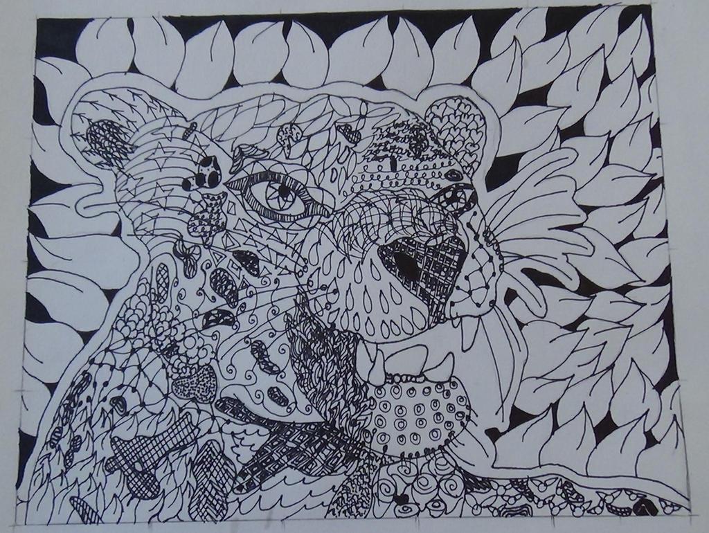 leopard beta: