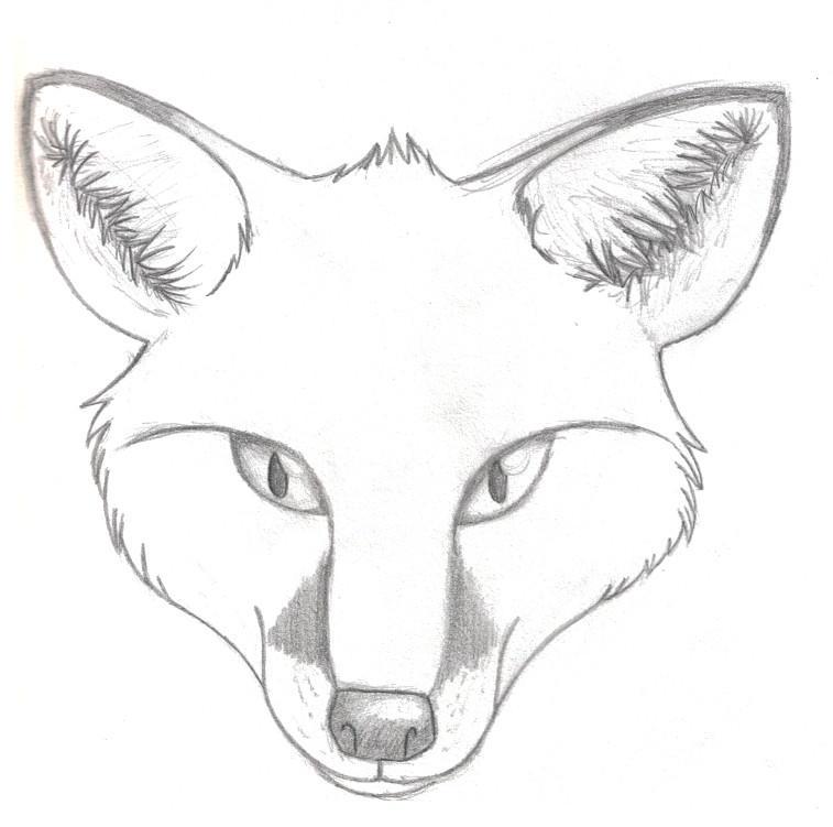Realistic Fox Head By Gabygalaxy On Deviantart