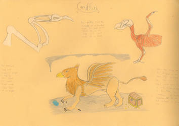 Griffin by banderson2557