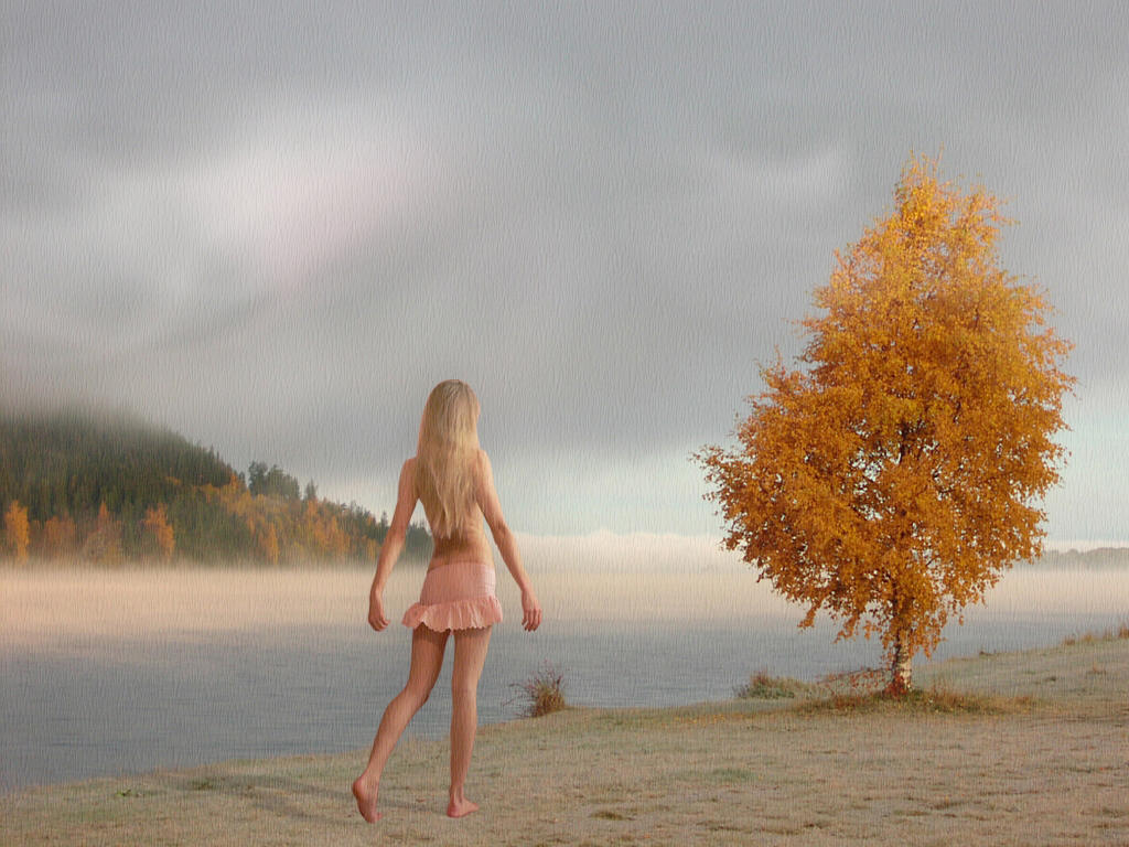 L'albero by Flore