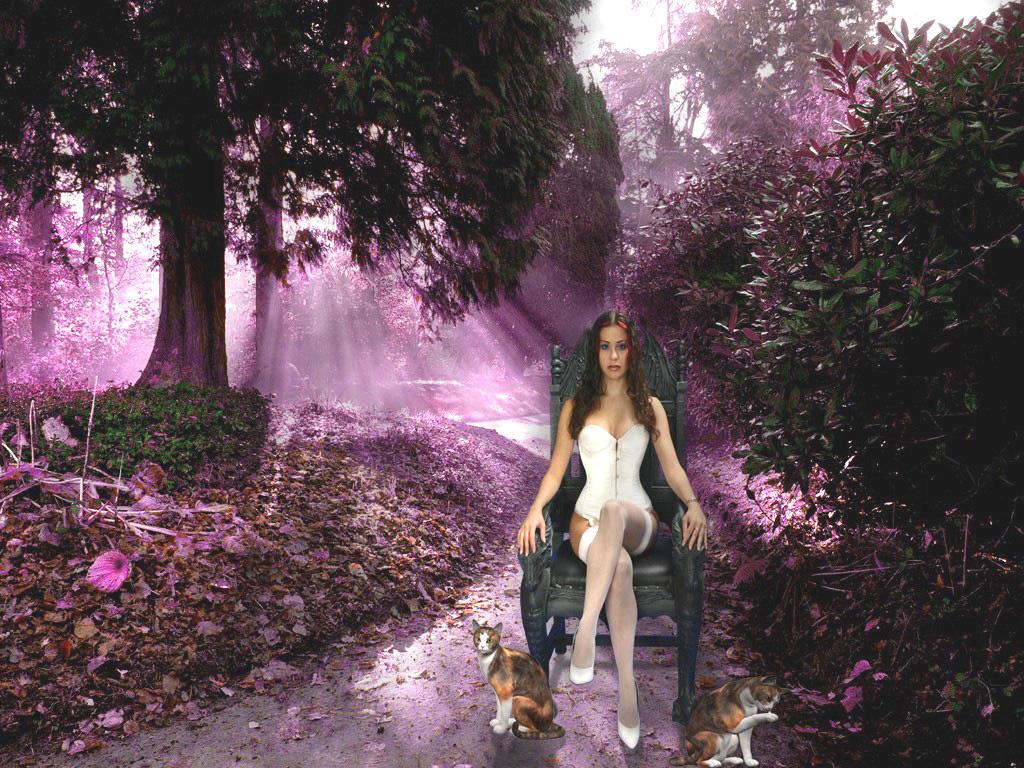La donna dei gatti by Flore