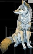 Premade: Sitting Wolf by winternacht