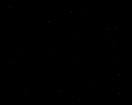 Bantam Phoenix lineart