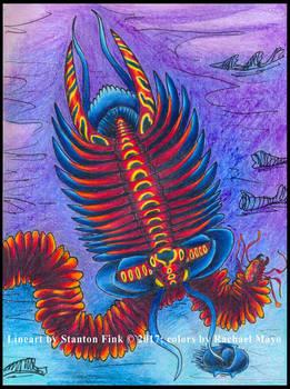 Shandong Swallowstone Trilobite