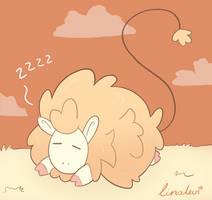 Floof sheep