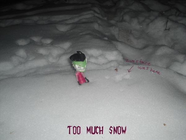 Zim found snow by ZimPLUSDib