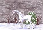 The last Unicorn - winter