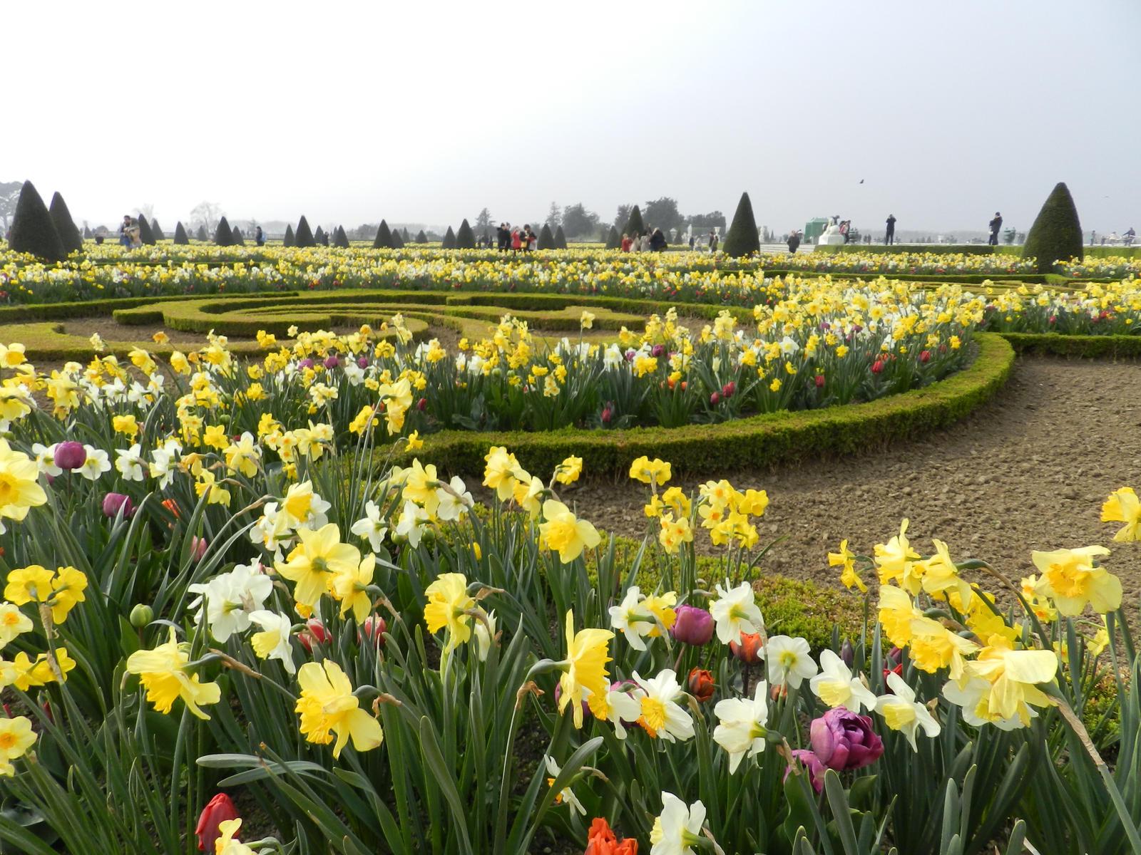 Versailles garden by andreibsc