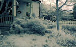 Yard (infrared) by BossGettys
