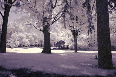 trees and bandstand (infrared) by BossGettys
