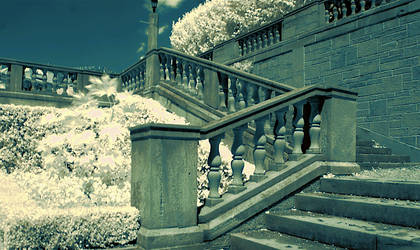 garden stairs (infrared) by BossGettys