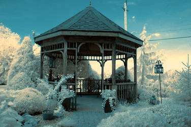 Garden backyard (infrared) by BossGettys