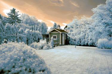 suburban backyard (infrared) by BossGettys