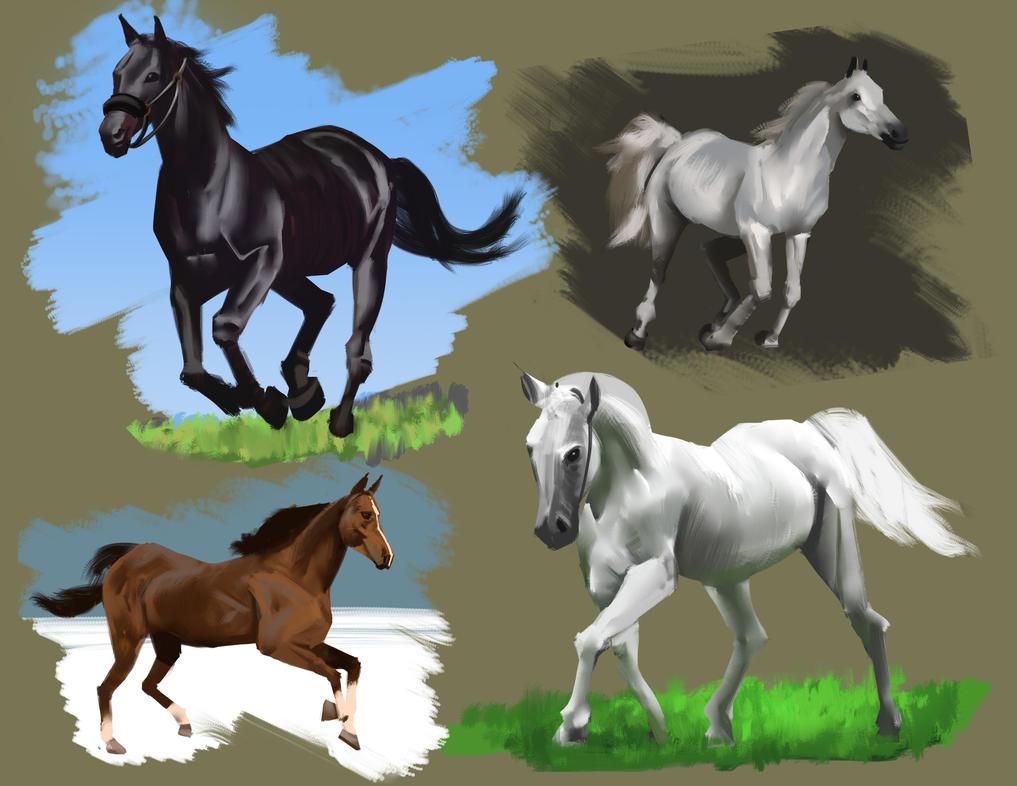 Horse studies by FelFortune