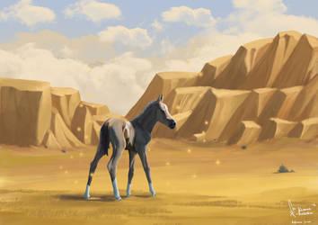 Akhal Teke foal in the desert of Turkmenistan