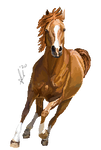 Arabian horse pixel by xSapience