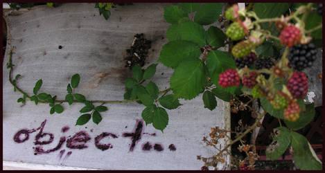 blackberry object... by object000