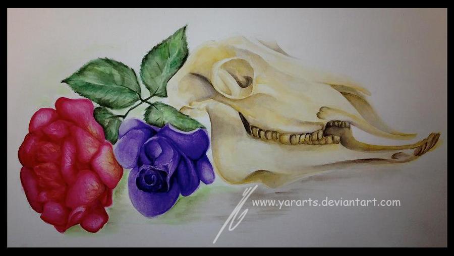 Skull and Roses final by YarArts