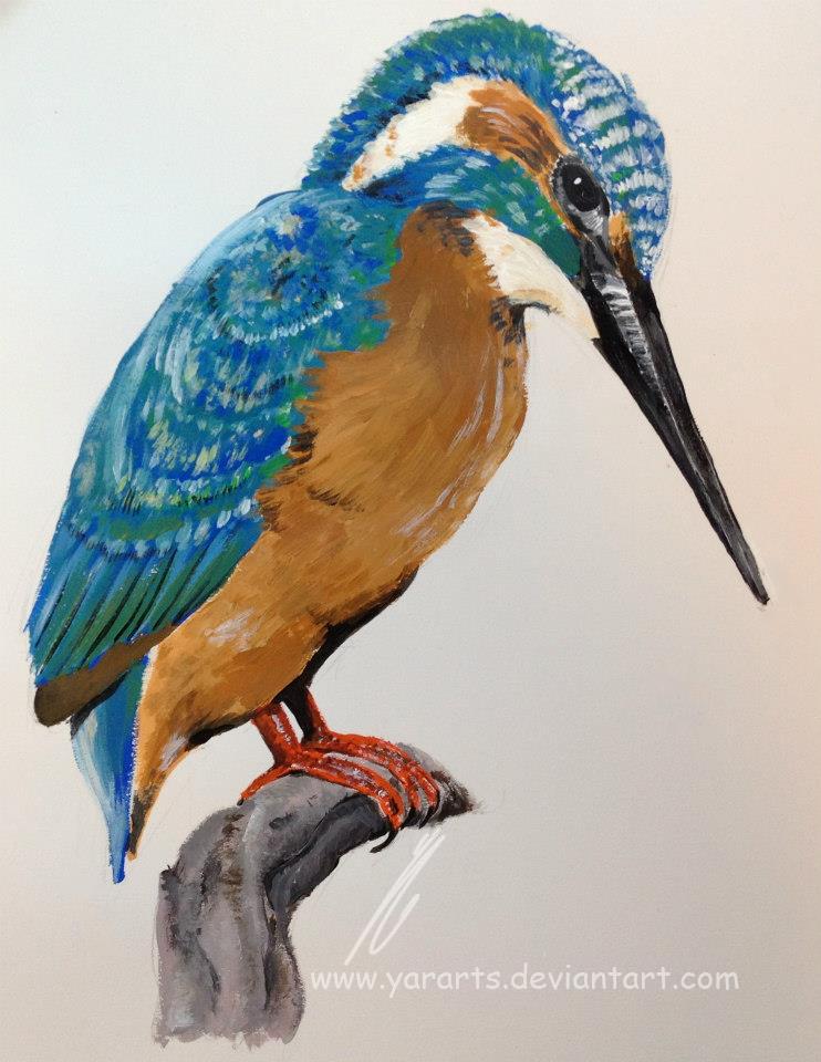 Kingfisher. by YarArts