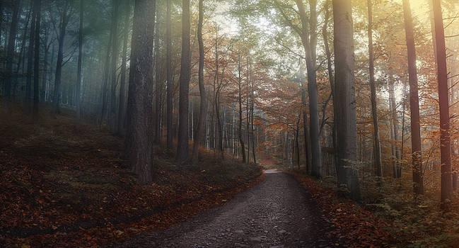 Autumn journeys II by Lumpy2