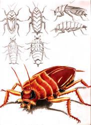 Demon Roach Studies 2 by Jujusaurus