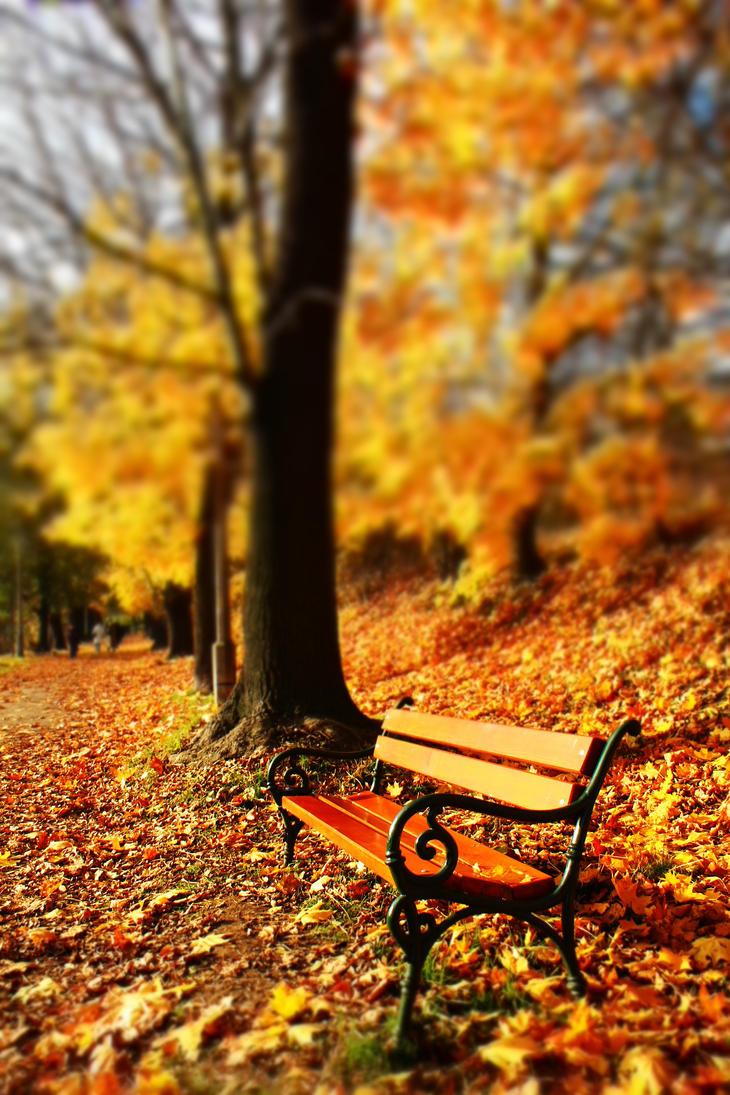 autumn by Selena890