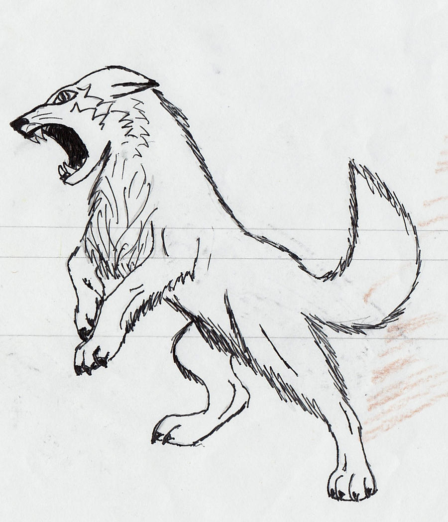 Angry Wolf by peace-love123 on DeviantArt