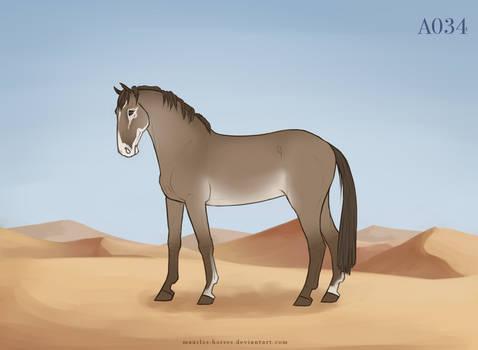 Maarlos Horse Import A034