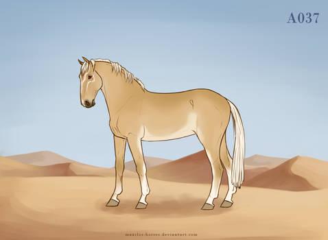 Maarlos Horse Import A037