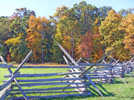Fall Trees Fence by vacuumslayer