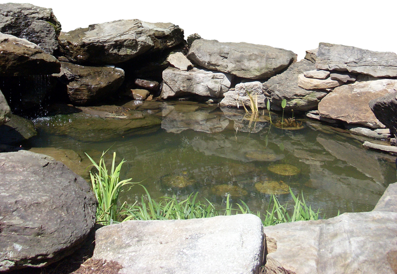 Little Pond And Stones Pre Cut By Vacuumslayer On DeviantArt