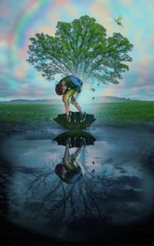 Upon Reflection