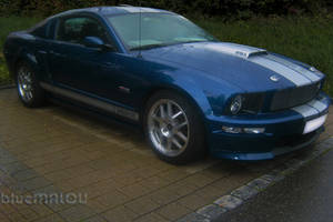 Blue Shelby Mustang by blueMALOU